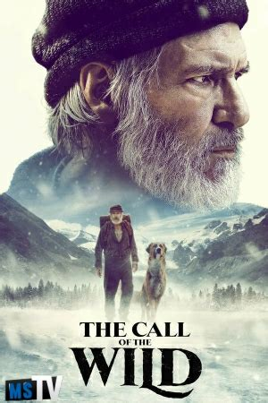 The Call of the Wild 2020 720p 1080p WEBRip