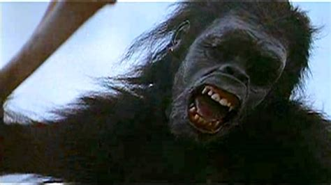 2001 A Space Odyssey - Ape and Bones - YouTube