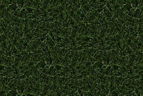 FREE 23+ Seamless Grass Texture Designs in PSD   Vector EPS